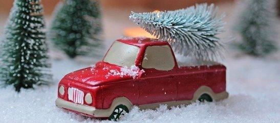 fir-tree-1856343_640